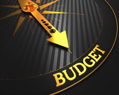 Budget - Lynnette Khalfani-Cox